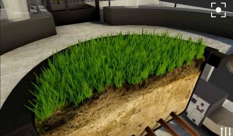 rendu herbe unity 3D